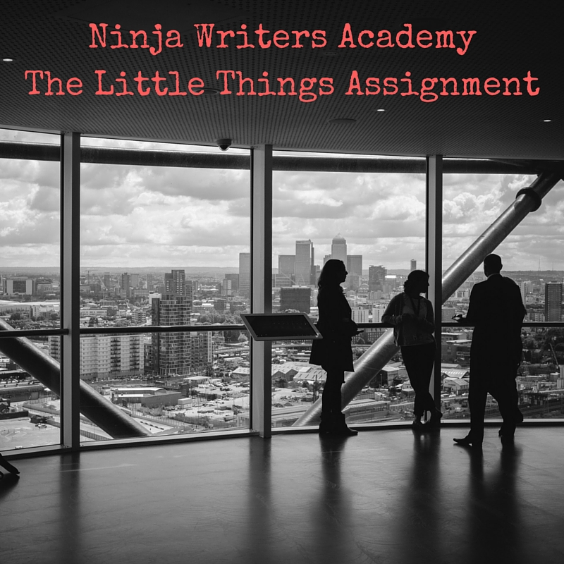 Ninja Writers AcademyThe Little Things Assignment